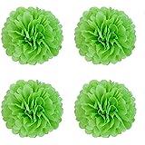 紙花 ティッシュペーパーポンポン、フラワーボールウェディングパーティー屋外装飾プレミアムティッシュペーパーポンポンフラワークラフトキット,Pom Poms,6個 - (20CM, アップルグリーン)