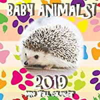 Baby Animals! 2019 Mini Wall Calendar