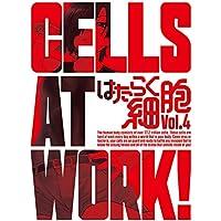 はたらく細胞 4