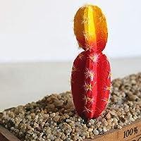 庭の砂漠の装飾人工植物繊細なフェイクサボテンウチワDIY景観ホーム多様なシミュレーション多肉植物:8