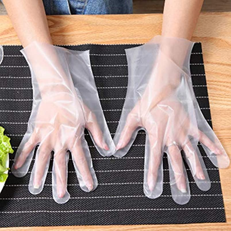 スキー頬対多目的使い捨て手袋 200枚入り プラスチック製 食品準備用手袋 ラテックス不使用 子供の美術工芸や絵画に最適 透明