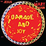 Damage & Joy [12 inch Analog]