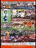 アルビレックス新潟 シーズンレビュー2012