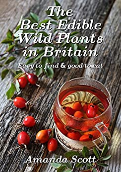The Best Edible Wild Plants in Britain: Easy to find & good to eat by [Scott, Amanda]