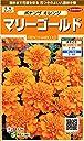 サカタのタネ 実咲花7632 マリーゴールドボナンザ オレンジ 00907632