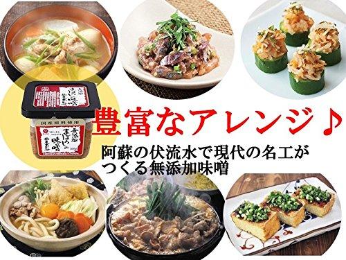 まぼろしの味噌 米麦合せ 500g×2個 梅屋 山内本店 国産原料のみを使用 無添加味噌