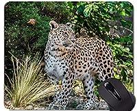 賭博のマウスパッドの習慣、ヒョウの野生のヒョウの滑り止めのゴム製基礎マウスパッド