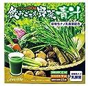 エバーライフ 飲みごたえ 野菜青汁 60包 (60包×1箱) 乳酸菌 配合