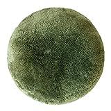 エア・リゾーム クッション 座布団 フロアクッション ふかふかビッグサイズクッション MOMO(モモ) マイクロファイバー:グリーン