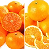 国華園 大人気柑橘! せとか&清見セット 10kg1組 みかん ご家庭用