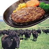 宗谷岬牧場のハンバーグ 120g×4枚入 北海道産 牛肉100% 稚内ブランド