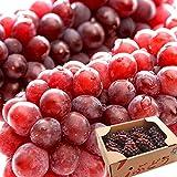 ぶどう 山形県産 デラウェア 9〜10房 3L 約2kg 種なし 葡萄 ギフト(gc)
