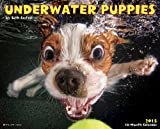 Underwater Puppies 2015 Calendar