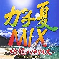 ガチ夏MIX~灼熱パラダイス~Mixed by DJ ROYAL
