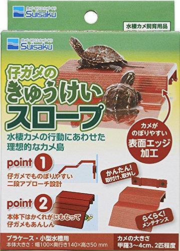 亀/カメ用品