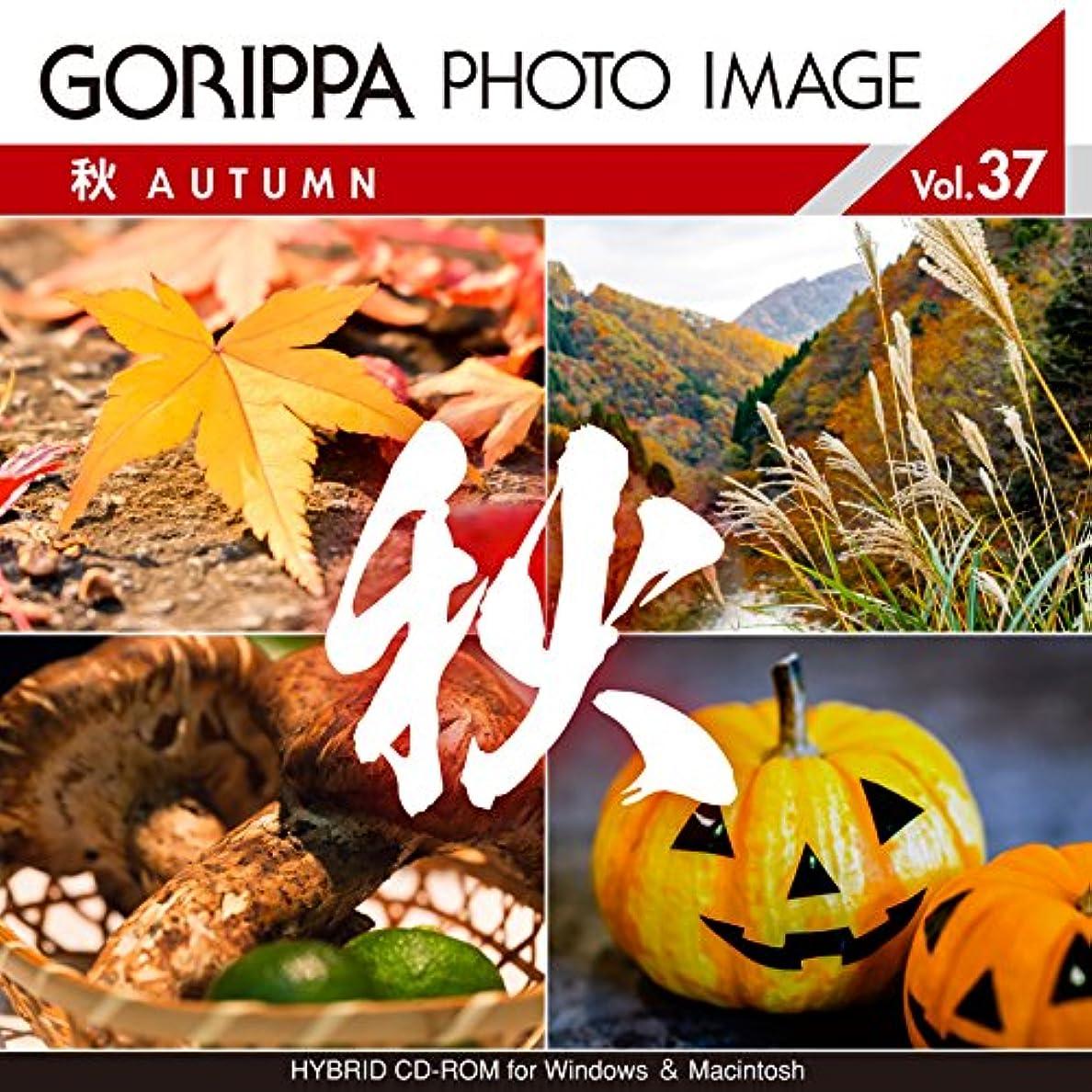 GORIPPA PHOTO IMAGE vol.37 ?秋?
