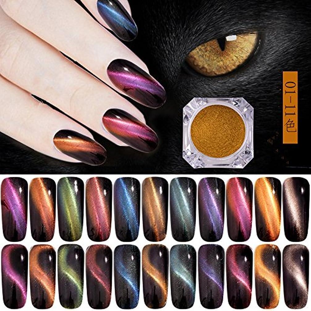 ファイナンス電気のシャイオーロラキャッツアイカラーパウダー カメレオン&猫の目のように効果 マグネットネイルパウダー マジック磁気グリッターダストUVジェルマニキュアネイルアートピグメント 11色から選べ (5)