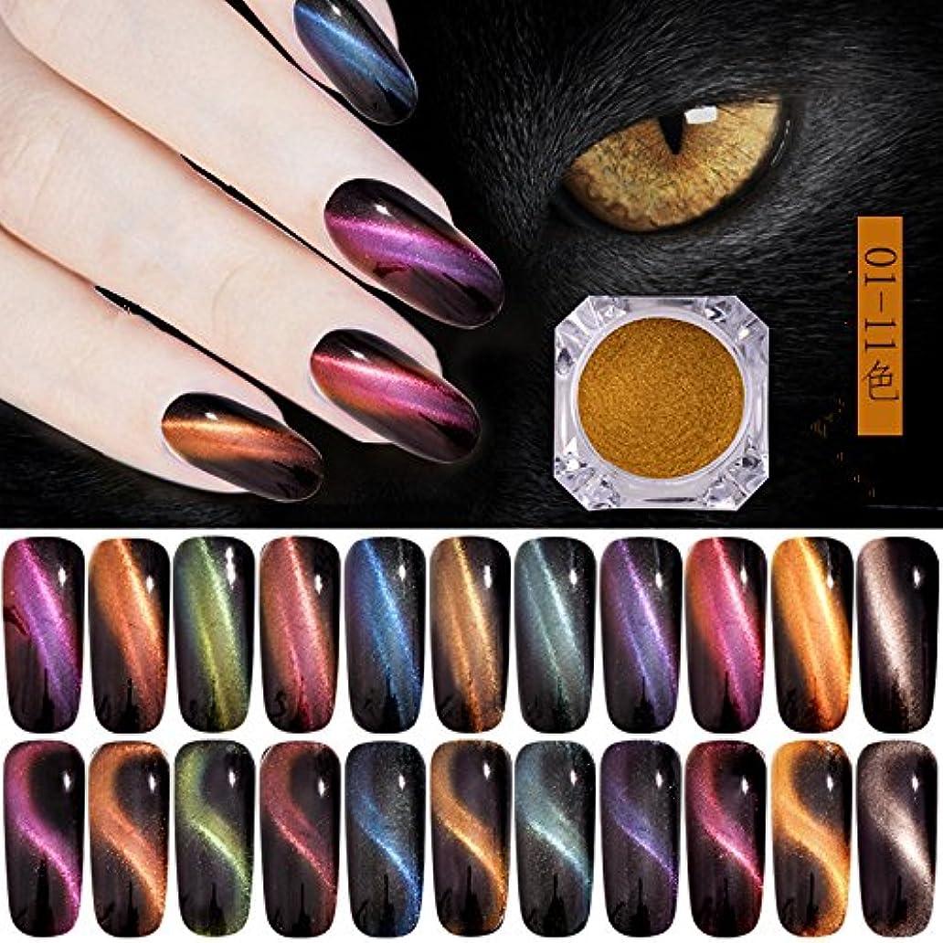 愛撫露骨な退却オーロラキャッツアイカラーパウダー カメレオン&猫の目のように効果 マグネットネイルパウダー マジック磁気グリッターダストUVジェルマニキュアネイルアートピグメント 11色から選べ (11色セット)