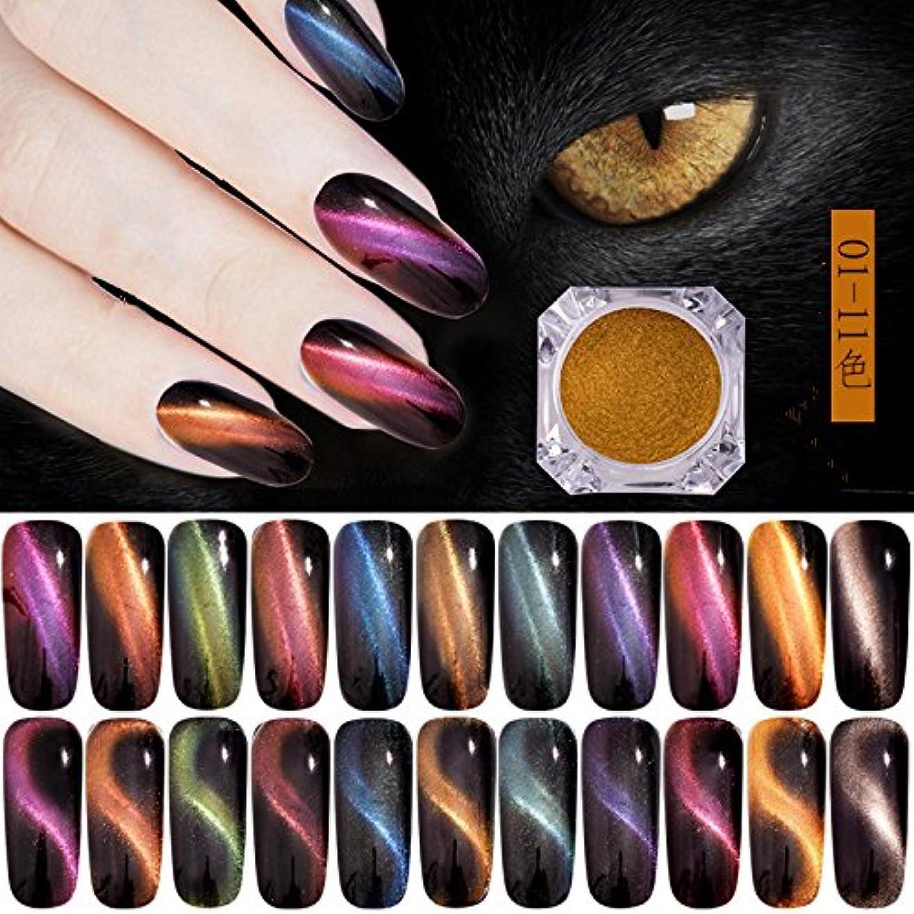 コンプリート惨めなトンネルオーロラキャッツアイカラーパウダー カメレオン&猫の目のように効果 マグネットネイルパウダー マジック磁気グリッターダストUVジェルマニキュアネイルアートピグメント 11色から選べ (11色セット)