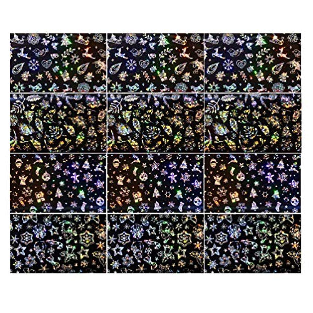 望む信じられない単語Lurrose 3セットクリスマスネイルステッカースノーフレークネイルタトゥーdiyネイルアート用女性マダムガールレディ
