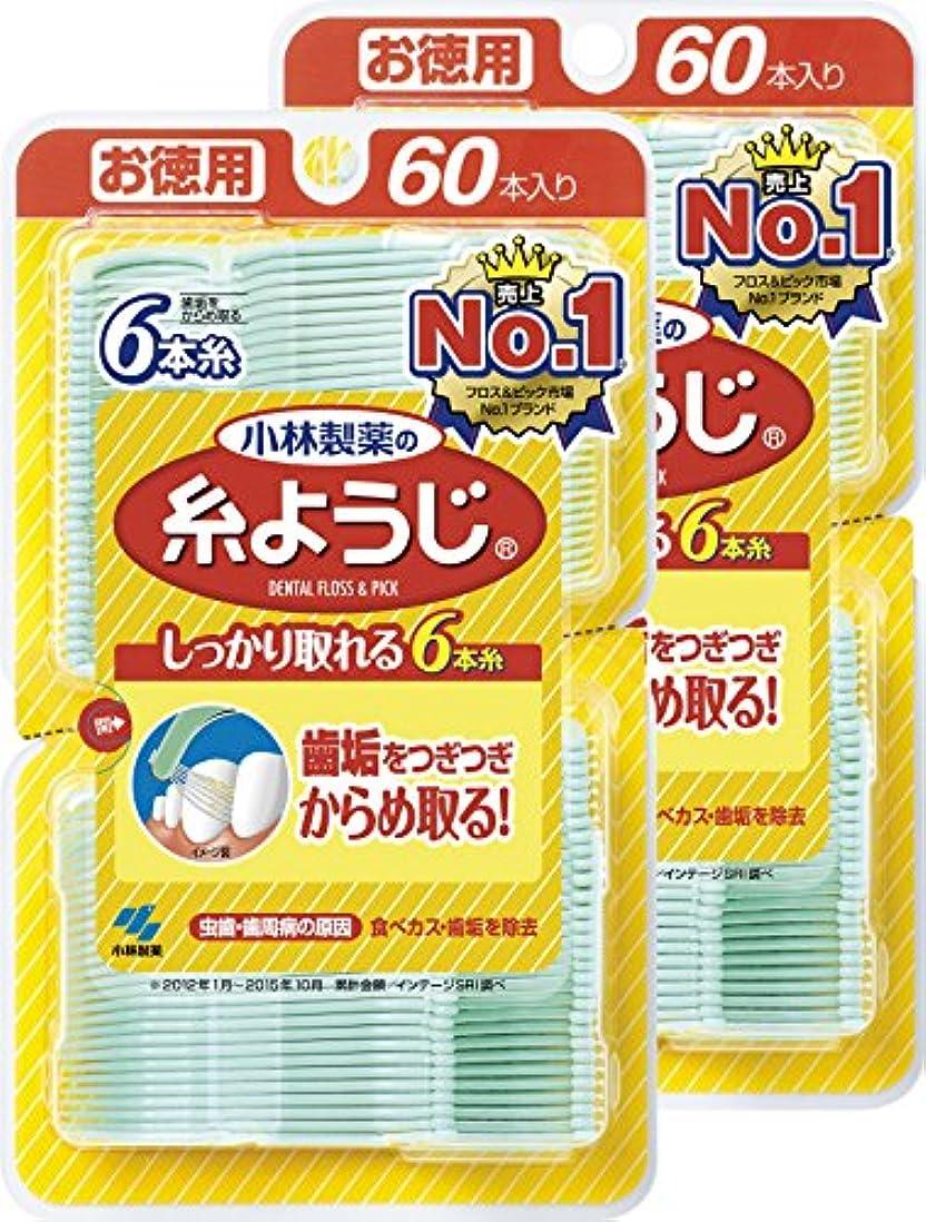 対頑丈句【まとめ買い】小林製薬の糸ようじ  フロス&ピック デンタルフロス 60本×2個