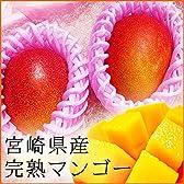 【宮崎県産】高級マンゴー 1玉当たり約400g 化粧箱入り 贈答用にもおすすめです。 (1玉入り)