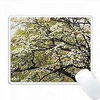 白いドッグウッドの木のグラフィックデザイン PC Mouse Pad パソコン マウスパッド
