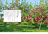 青森・函館めぐり ―――クラフト・建築・おいしいもの (地球の歩き方Books) 画像