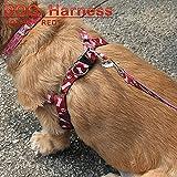 優しく留めるだけの簡単装着!愛犬の首にとても優しい小型犬用ハーネス 並行輸入品