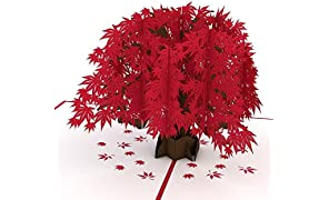 Lovepop Japanese Maple Pop Up Card, 3D Card, Tree Card, Nature Card, Foliage Card, Birthday Card
