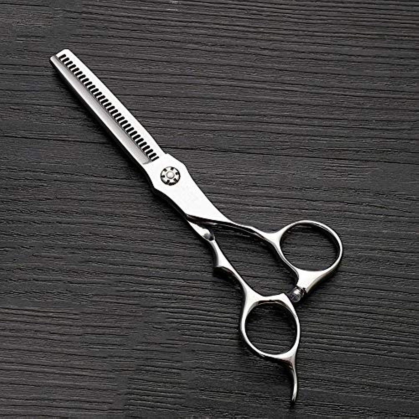 国内の爵通信する6インチのステンレス鋼の歯のせん断の薄くする理髪はさみ、美容院の特別なはさみ ヘアケア (色 : Silver)