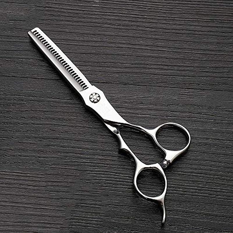 カップフィルタウイルスHOTARUYiZi 散髪ハサミ カットバサミ セニング 散髪はさみ すきバサミ ヘアカット プロ カットシザー 品質保証 耐久性 美容院 ステンレス鋼 専門カット 6インチ 髪カット (色 : Silver)