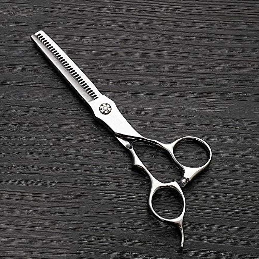 大脳ミケランジェロ一時停止理髪用はさみ 6インチのステンレス鋼の歯のせん断の薄くする理髪はさみ、美容院の特別な理髪はさみ毛の切断はさみステンレス理髪はさみ (色 : Silver)