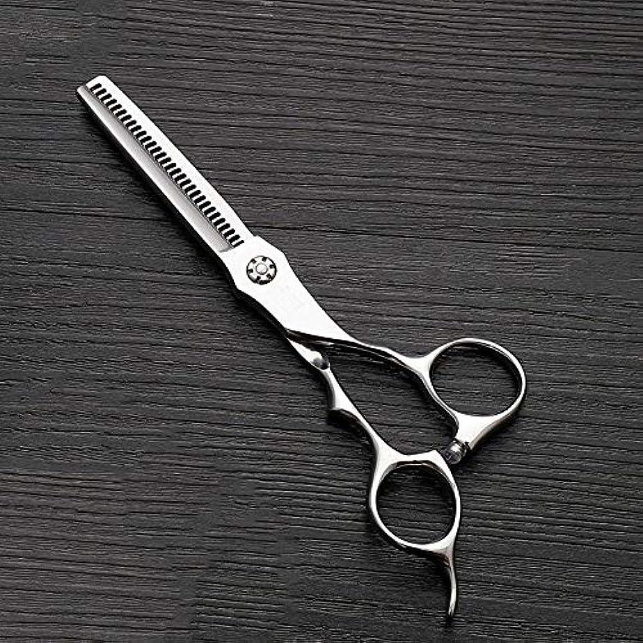 特性記念品発行する6インチのステンレス鋼の歯のせん断の薄くする理髪はさみ、美容院の特別なはさみ ヘアケア (色 : Silver)