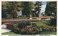 デンバー、コロラド–ビューのElitch園とホーム 12 x 18 Art Print LANT-7708-12x18