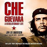 チェ・ゲバラの政治家 Che Guevara Politicians Painting silk fabric poster シルクファブリックポスター 80cm x 80cm
