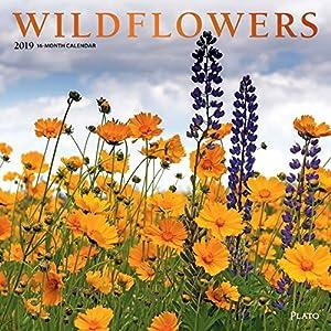 Wildflowers 2019 Calendar