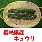 九州 長崎県産 農産物直売所 販売用 キュウリ 2本入り