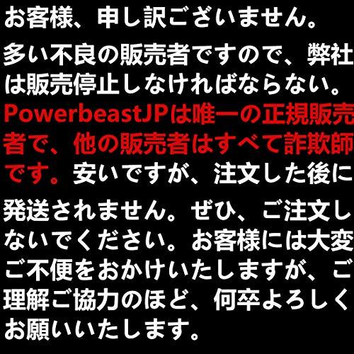 Powerbeast ドローン ラジコン ミニドローン ジェスチャー制御 自動回避障害機能 2段スビ...
