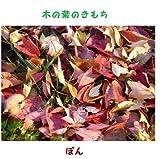 木の葉のきもち