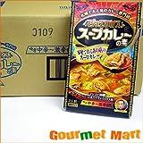 マジックスパイス スープカレーの素 40箱セット