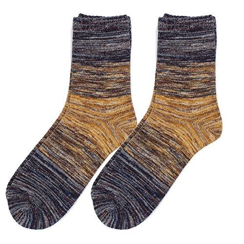 (花田)Hanada靴下 メンズ グラデーション ソックス 2足組 綿 抗菌防臭 カジュアル 25-28cm