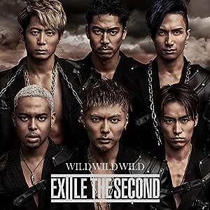 WILD WILD WILD(DVD付)