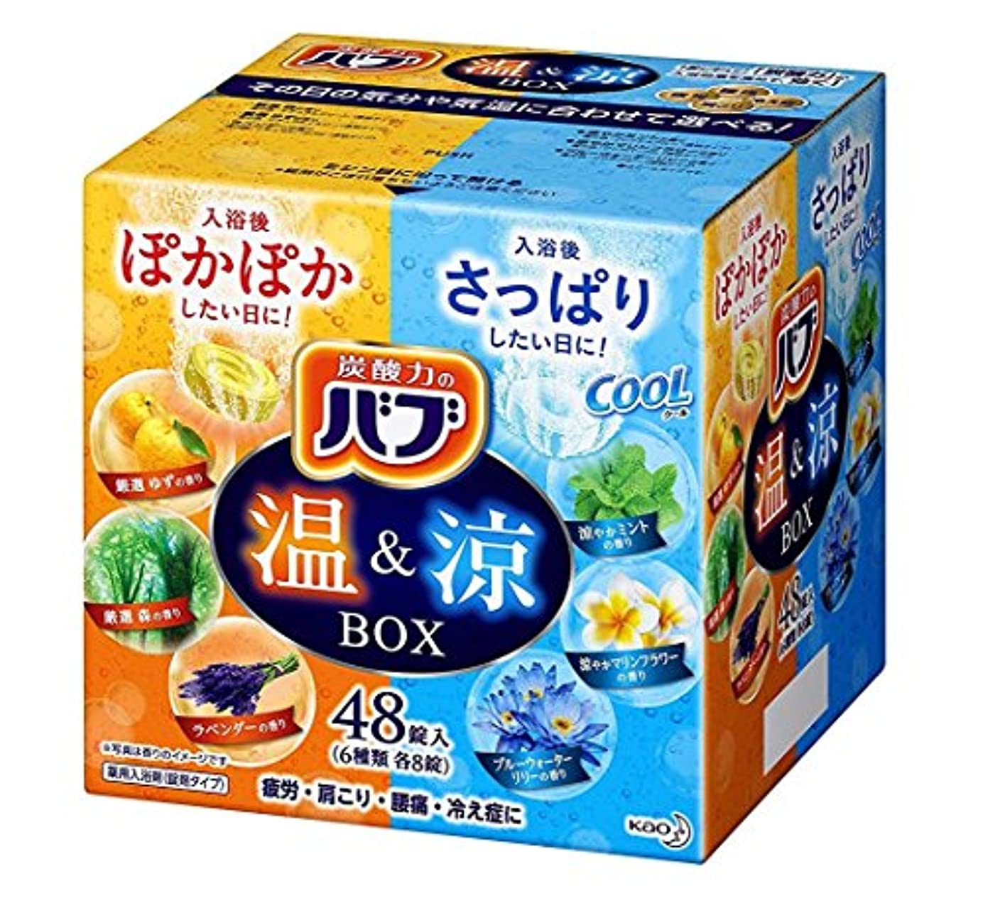 面倒家族暫定の【大容量】バブ 温&涼BOX 48錠 炭酸入浴剤