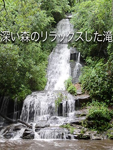 深い森のリラックスした滝