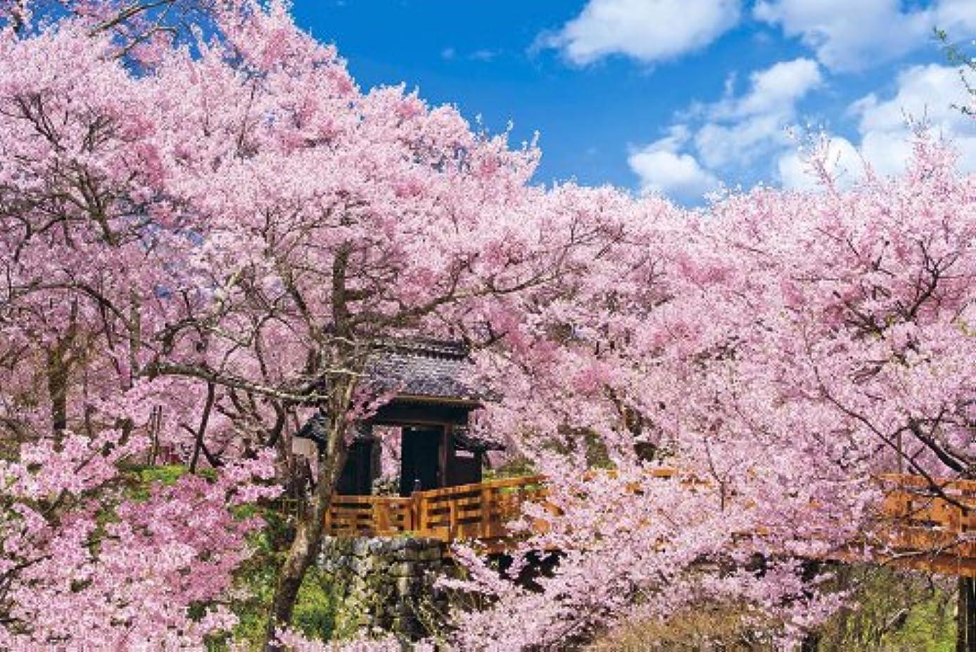 切る不信入浴1000ピース ジグソーパズル 桜咲く高遠城址公園 長野 めざせパズルの達人 (50x75cm)