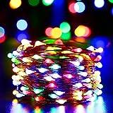 (リーダーテク)lederTEK AC電圧式 カラー光 銅線ワイヤー 電飾 イルミネーション LED 10m 100電球 クリスマス ライト 新年 飾り付け