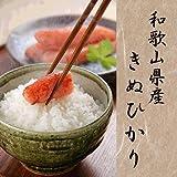 平成29年産 和歌山産 キヌヒカリ 玄米 紀州米 各種サイズ 玄米食不可 (玄米のまま, 28kg)