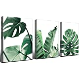Canvas Wall Art Panel Wall Painting/Picture Canvas Print/Framed Art for Home Decor Decoration Gift Piece, Green Plant Decorat