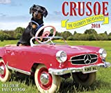 Crusoe the Celebrity Dachshund 2018 Calendar